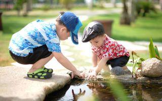 Механизмы познавательного развития детей дошкольного возраста