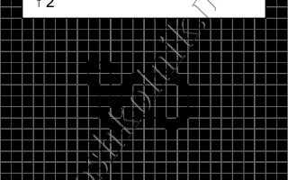 Графический диктант Черепаха: рисунок по клеточкам для дошкольников