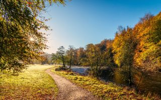 Физминутка про осень