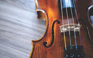 Развитие музыкальных способностей у детей дошкольного возраста