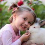 Как происходит развитие внимания у детей дошкольного возраста
