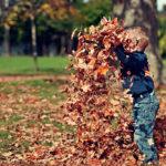 Ключевые возрастные особенности детей дошкольного возраста