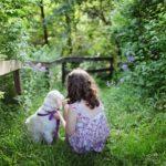 Методы экологического воспитания дошкольников в рамках ДОУ